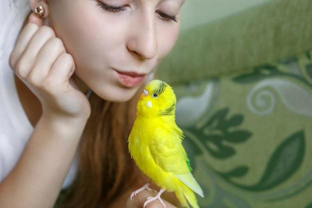 Птицы и дети