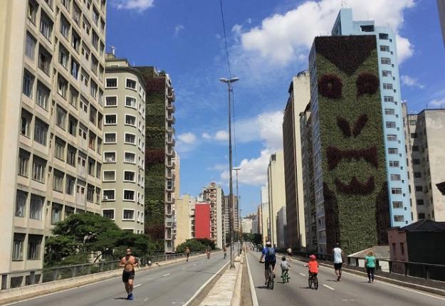 Экологическая вертикальная стена на улице Сан-Паулу